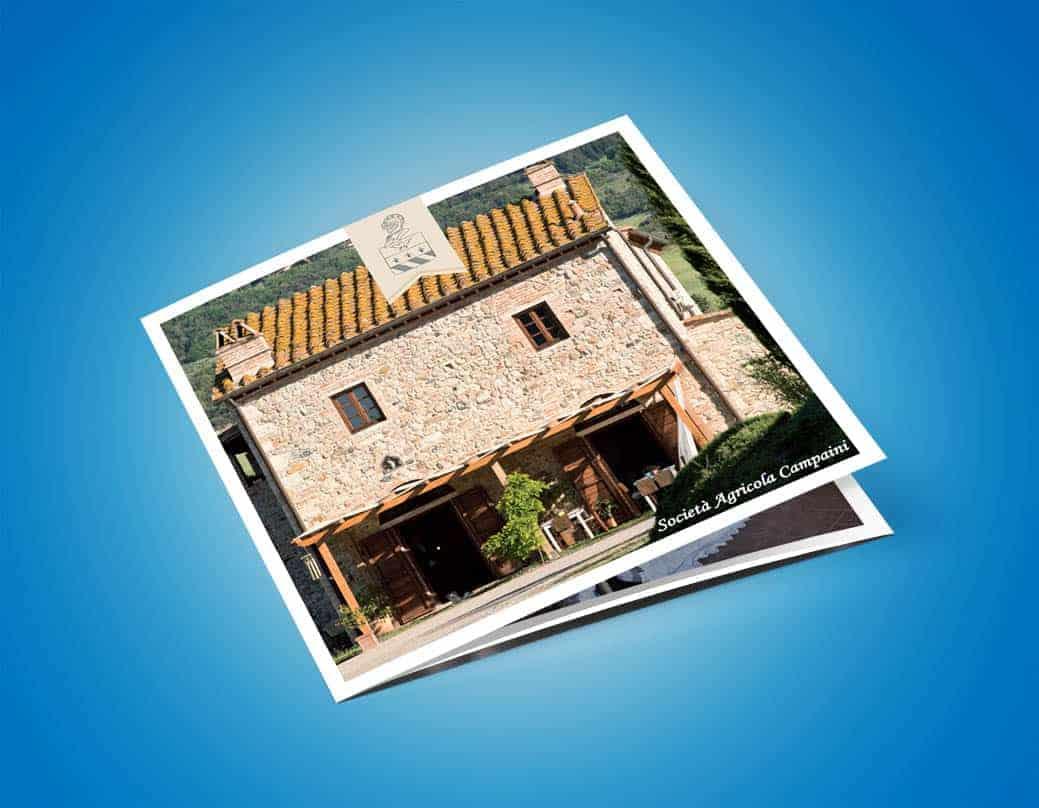 Brochure design square cover